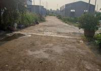 Bán 100m² đất tặng 25m² đất lưu không ở Minh Kha, Đồng Thái, An Dương