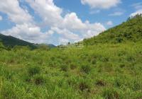 Đất vườn, bọc quanh suối Ninh Tây - Ninh Hòa