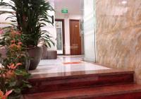 Cần bán tòa căn hộ cho thuê phố Đào Tấn 163m2 x 10 tầng - nội thất vip