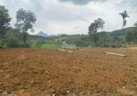 Vừa rẻ vừa đẹp lô đất tổng diện tích: 4030m2 có 400m2 tc đất thuộc Tốt Yên, Cư Yên, Lương Sơn