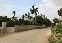 Cần tiền gia đình bán lô đất 660m2 thổ cư 100m2 mặt đường trục chính Cư Yên - Lương Sơn - Hoà Bình