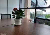 Cho thuê văn phòng có sẵn nội thất làm việc tại Tòa nhà The Sun Avenue Quận 2