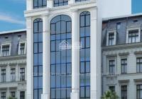 Nhà mặt phố Trần Thái Tông - Cầu Giấy vị trí đẹp 185m2 chính chủ