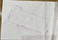 Chính chủ cần bán gấp lô góc 2 mặt tiền An Tây 065 và đường Bờ Bao An Tây giá chỉ 2.8tr/m2