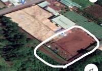 Bán lô đất đẹp đường Nguyễn Siêu, xã Diên Phú, TP Pleiku. DT: ngang 67m - dài 40m, 110tr/mét ngang