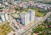 Trực tiếp CĐT: Quỹ căn hộ HC Golden City - Long Biên chỉ từ 2,7 tỷ căn 2PN và 3,3 tỷ căn 3PN