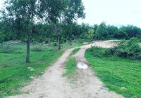 Đất Ninh Hưng -- 360 triệu ( thích hợp làm mini Farm )