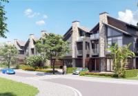 Chính chủ bán nhanh căn biệt thự song lập khu C dự án Xanh Villas giá siêu rẻ