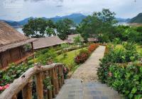 Dịch Covid thì nên sống ở đâu. Chỉ từ 740 triệu sở hữu ngay đất ngay Bảo Lộc-Bảo Lâm: 0901.187.517