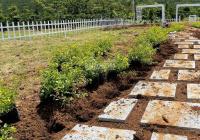 Gia đình khó khăn cần ra lô đất Đà Lạt, ngay trung tâm
