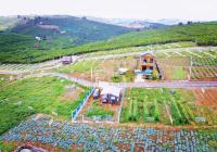 Đất nền nghỉ dưỡng Bảo Lộc tiện ích đầy đủ gần cao tốc Dầu Giây Liên Khương. Nâng tầm Cuộc Sống mới