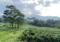 Lô đất vàng trong làng nghỉ dưỡng cực phẩm 46.935m2 tuyệt đẹp tại Xóm Rùa, Vân Hòa, Ba Vì, Hà Nội