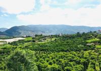 Cần bán lô đất nền Lâm Hà ven Đà Lạt có sẵn thổ cư, DT 500m2 giá rẻ