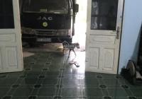 Cho thuê nhà sau cây xăng hồ bửu số 8 Huỳnh Văn Lũy, Phú Mỹ, Thủ Dầu Một