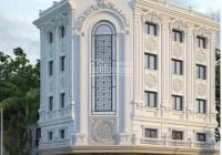 Cho thuê biệt thự 214 Nguyễn Xiển 165m2, 5.5 tầng căn góc thông sàn thang máy. LH 0866936198