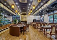 Siêu hot! Cho thuê nhà mặt phố Trần Quang Diệu DT 90m2 x 6T, MT 7m, giá 60tr/th LH 0338998398