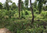 Cần tiền bán lô đất rẫy Châu Đức - BRVT. DT 3620m2, giá 2,4 tỷ, đất rẻ nhất khu vực, đáng đầu tư