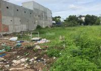 Chính chủ bán gấp đất Vườn Thơm 224m2 có 160m2 thổ, đường 8m trải nhựa đẹp, SHR