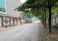 Nhà phố Thanh Am - đường rộng hè thoáng, tiện ích ngập tràn - 40m2 - mặt tiền 5m - chỉ nhỉnh 3 tỷ
