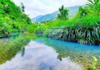 1.5ha suối Ninh Hưng mê li - 880 triệu