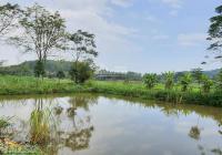 Cần bán lô đất 1893m2 view cánh đồng, có ao tại Yên Bài - Ba Vì - Hà Nội, giá 2, x tỷ