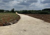 Đất sào đầu tư khu vực Bàu Cạn, cạnh KCN Bàu Cạn - Tân Hiệp, cách sân bay 2km, giá chỉ 1tr6/m2