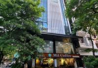 Bán nhà phố Vũ Ngọc Phan, Q Đống Đa, DT 65m2, 5T TM, cách mặt phố 15m, phân lô, kinh doanh tốt