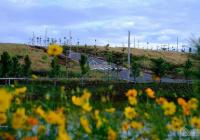 Kẹt tài chính bán nhanh lô đất ở Bảo Lộc. 420tr. 200m2. Gần view hồ Ngọc 4 mùa