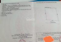 Cần bán 544m2 đất trồng cây thuộc Hoà Phong, Hòa Vang, Đà Nẵng