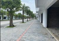 Bán căn liền kề 95m2 đắc địa tại Ecopark Hải Dương LH 0972402092