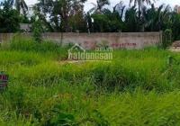 Đất giá siêu rẻ SHR dt 3000m2 đường Vườn Lài, P An Phú Đông