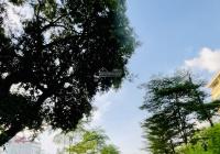 Hàng hiếm lô góc Võ Chí Công, nở hậu DT 32m2 MT 5m 3,75tỷ. Nhà đẹp ở ngay