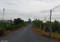 Chính chủ bán đất kênh 8 Vườn Thơm Bình Lợi, Bình Chánh