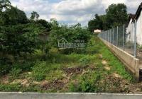 Cho thuê đất Định Hòa, mặt tiền đường nhựa DX 078, 9x99m gần 1000m2