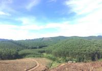 30ha đất làm trại lợn tại Yên Thủy, Hòa Bình đường to xe container vào được