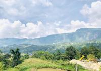 Mảnh đất xây dựng homestay tại thôn Lao Chải, Xã Y Tý, Lào Cai, DT 1859m2 giá hơn 1 tỷ
