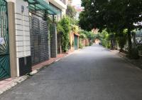 Biệt thự nhà vườn phố Hoàng Như Tiếp, ô tô tránh, ở và kinh doanh, 4 tầng, gara ô tô, thang máy