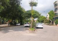 Không sử dụng đến gia chủ cần bán gấp mảnh đất trong khu đấu giá Tầm Dâu, Việt Hưng