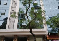 Cho thuê tòa nhà mặt phố Dịch Vọng Hậu. DT: 150m2 * 7 tầng + 1 hầm, MT: 8m thông sàn