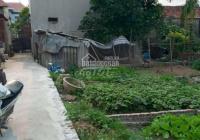 Chính chủ bán đất thôn Siêu Quần, Thanh Trì, Hà Nội. Giá tốt liên hệ 0918560516