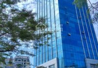 BQL tòa nhà 169 Vương Thừa Vũ cho thuê văn phòng 125 m2 giá 230k/m2 view thoáng lô góc sáng
