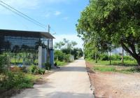 Đất thị xã Hoà Thành, giá cực rẻ chỉ từ 105 triệu/m ngang