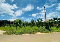 Bán đất hẻm số 60 đường Phan Chu Trinh, P. Lộc Tiến-Tp Bảo Lộc  Diện tích: 3367m2 mặt tiền 31 sâu106