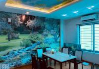 Bán nhà riêng Phan Kế Bính - Ba Đình, DT: 42m2, 5T, MT 4m, giá 4.2 tỷ