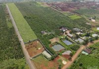 Đất mặt tiền đường Tản Đà, 360m2, giá 2 tỷ