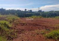 Kẹt tiền bán gấp lô đất tâm huyết của gia đình tiếc đứt ruột Diện tích 6x30m thổ cư hết đất