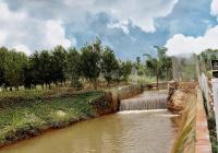 Cần bán đất ven suối, gần Hồ Nam Phương, TP Bảo Lộc, DT 260m TC, 900tr