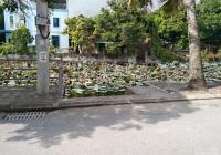 Bán đất Giao Tất A, Kim Sơn - đầu tư là có lợi 60m2 - giá 17 tr/m2