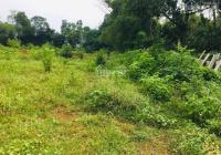 Chính chủ nhờ bán lô đất - Gò Bài - Lương Sơn - Hòa Bình