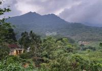 Chính chủ cần bán gấp lô đất 430m2 tại thôn Sui Quán, xã Khánh Thượng, huyện Ba Vì, TP Hà Nội